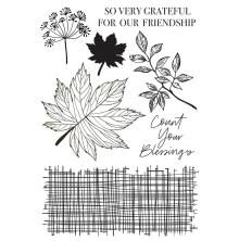 Kaisercraft Clear Stamp 6X4 - Fallen Leaves