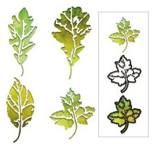 Tim Holtz Sizzix Thinlits Dies - Leaf Print
