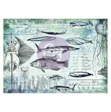 Prima Finnabair Tissue Paper - Nautical