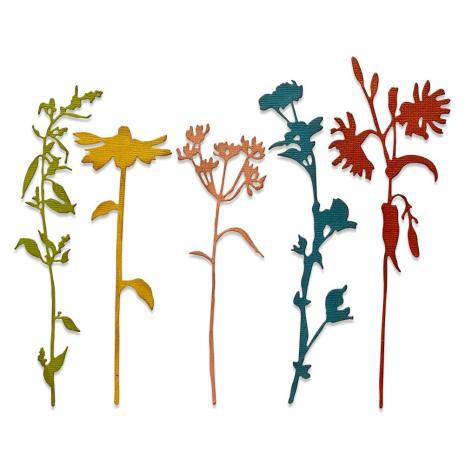 Tim Holtz Sizzix Thinlits Dies - Wildflower Stems #3