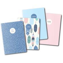 Carpe Diem A6 Notebooks 4/Pkg - Feathers