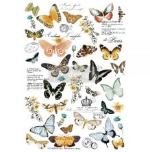 Prima Redesign Decor Transfers - Butterfly Dance