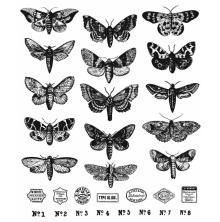 Tim Holtz Cling Stamps 7X8.5 - Moth Study