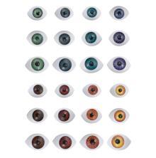 Tim Holtz Idea-Ology Creepy Eyes 24/Pkg