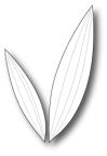 Memory Box Die - Elegant Leaves