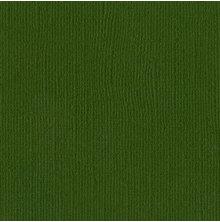 Bazzill Cardstock 12X12, 25/Pkg - Canvas/Ivy