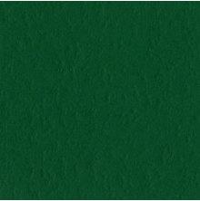 Bazzill Cardstock Mono 12X12, 25/Pkg - Classic/Green