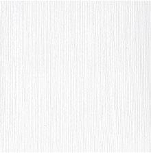 Bazzill Cardstock 12X12, 25/Pkg - FOURZ Avalanche