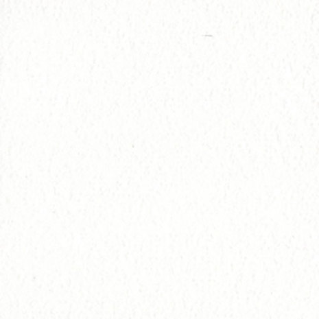 Bazzill Cardstock 12X12, 25/Pkg - Orange Peel White