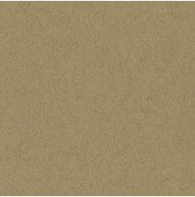 Bazzill Cardstock 12X12, 25/Pkg - Classic Craft
