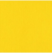 Bazzill Cardstock Mono 12X12, 25/Pkg - Bazzill/Yellow