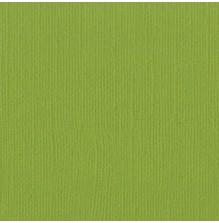 Bazzill Cardstock Mono 12X12, 25/Pkg - Canvas/Parakeet