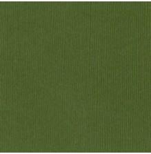Bazzill Cardstock Mono 12X12, 25/Pkg - Canvas/Nixon