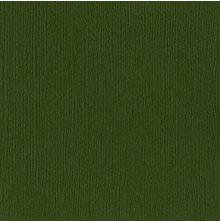 Bazzill Cardstock 12X12, 25/Pkg - FOURZ Rain Forest