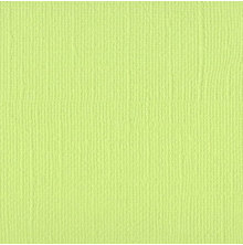 Bazzill Cardstock Mono 12X12, 25/Pkg - Limeade