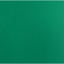 Bazzill Mono Adhesive Cardstock 12X12 -  Bazzill Green