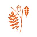 Tonic Studios Autumn Die Collection – Autumnal Oak 1431E