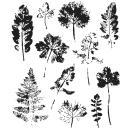 Tim Holtz Cling Stamps 7X8.5 - Leaf Prints