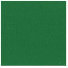 Bazzill Cardstock Mono 12X12, 25/Pkg - Canvas/Green