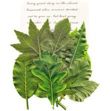 Prima Printed Fabric Leaf Embellishments 12/Pkg - Rainer Leaves
