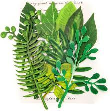 Prima Printed Fabric Leaf Embellishments 12/Pkg - Evergreen