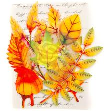 Prima Printed Fabric Leaf Embellishments 12/Pkg - Autumn Maple