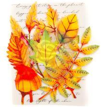 Prima Printed Fabric Leaf Embellishments 12/Pkg - Autumn Maple