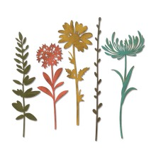 Tim Holtz Sizzix Thinlits Die Set 5PK - Wildflower Stems #1 19-01