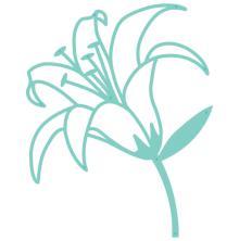 Kaisercraft Decorative Die -Lily