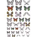 Tim Holtz Idea-Ology Transparent Acetate Wings 72/Pkg