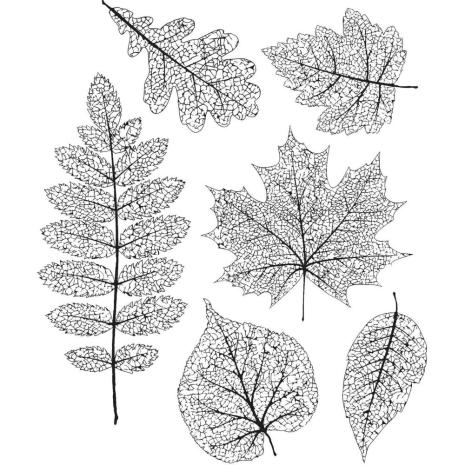 Tim Holtz Cling Stamps 7X8.5 -Pressed Foliage