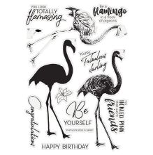 Crafters Companion Clear Stamp - Fabulous Flamingo
