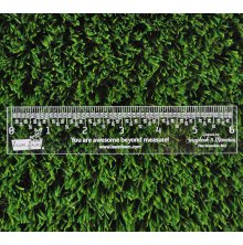 Lawn Fawn 6inch Clear Ruler