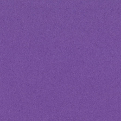 Bazzill Cardstock 12X12 25/Pkg Smoothies - Grape Delight