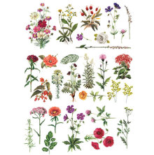 Prima Re-Design Decor Transfers - Floral Collection